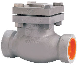 886/886M Series - Stainless Steel Swing Check Valves